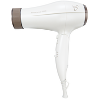 Whirlwind Pro Hair Dryer