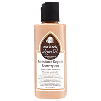 Argan Oil Moisture Repair Shampoo 3 oz.