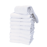 Premium White Salon Towels