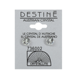 Destine Clear Diamond Cut Earrings