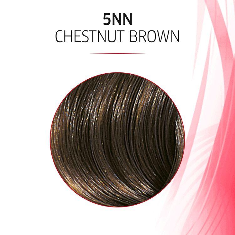 5NN Chesnut Brown Permanent Masque Hair Color