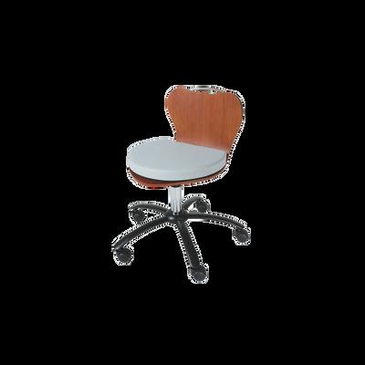 Technician's Chair