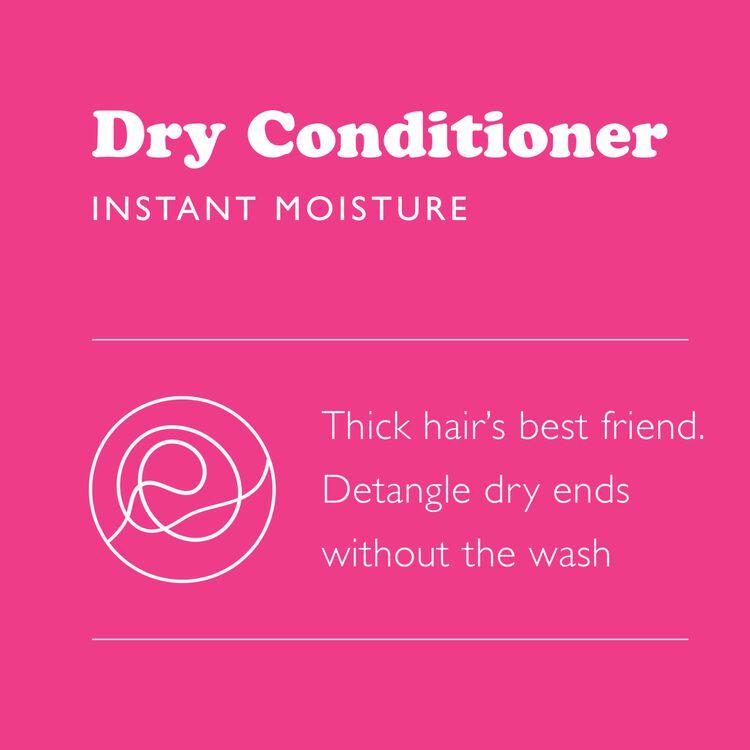 Dry Conditioner Instant Moisture
