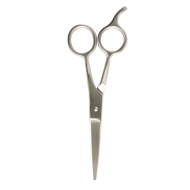 Styling Shears 5.5 Inches